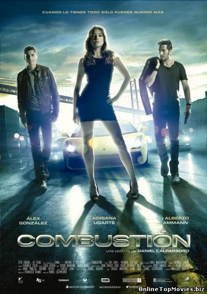 Combustion (2013)